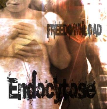 cover endocytose